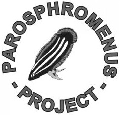 ParosProject